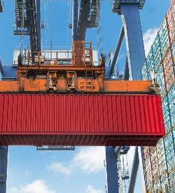 Novas habilitações devem impulsionar vendas à China