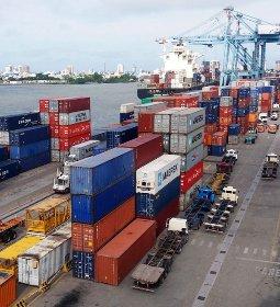 Boi/Cepea: embarque segue intenso; China se torna maior destino de carne nacional