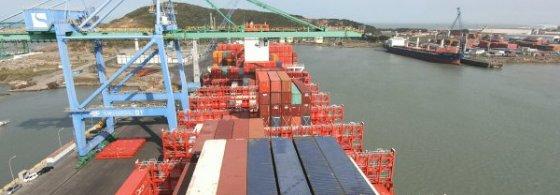 Santa Catarina lidera exportações nacionais de carne suína no primeiro semestre