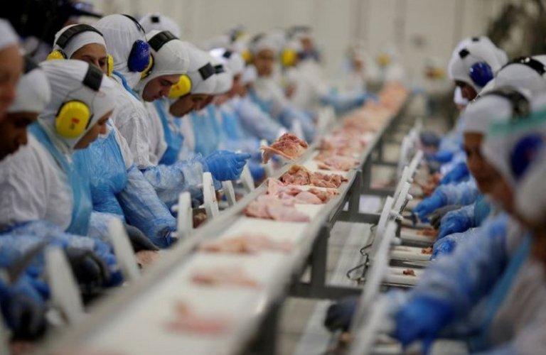 Produção animal de qualidade garante brasil como um dos principais mercados do mundo